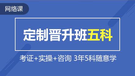 税务师-联报课程-定制晋升班五门联报(不含猎头)