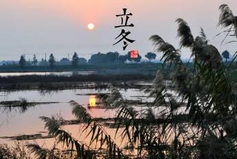 2015年11月08日 - znx123000 - 心语小院