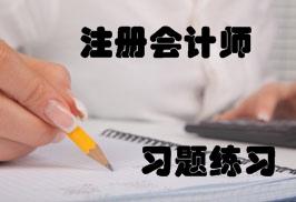 注册会计师练习题精选