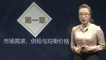 中级经济师名师张宁