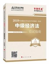 """2017年中级会计职称经济法""""梦想成真""""系列丛书应试指南"""