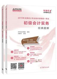 """2019年初级会计职称两科""""梦想成真""""系列丛书经典题解(预订)"""