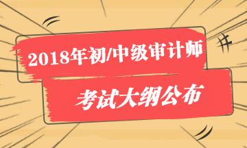 2018年初/中级审计师考试大纲公布