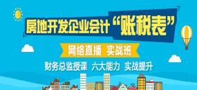 """房地产开发企业会计主管""""账税表"""""""