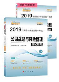 """2019年注册会计师《公司战略与风险管理》""""梦想成真""""系列应试指南(上下册)"""