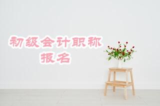 陕西省2019年初级会计资格考试报名流程