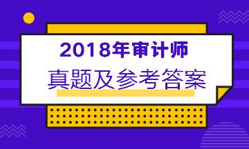 2018年中级审计师考试真题及答案