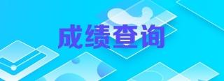 江苏南京2018年初级审计师成绩查询时间什么时候公布?