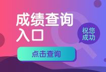 2018审计师成绩查询入口开通!