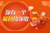 high购新春课   审计师超值精讲班低至7.6折!