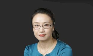 张 宁《高级经济理论与实务》