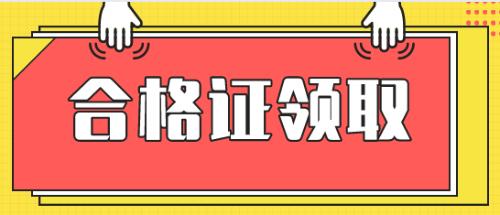 注册税务师证书图片