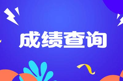 2019年注册会计师成绩查询图片