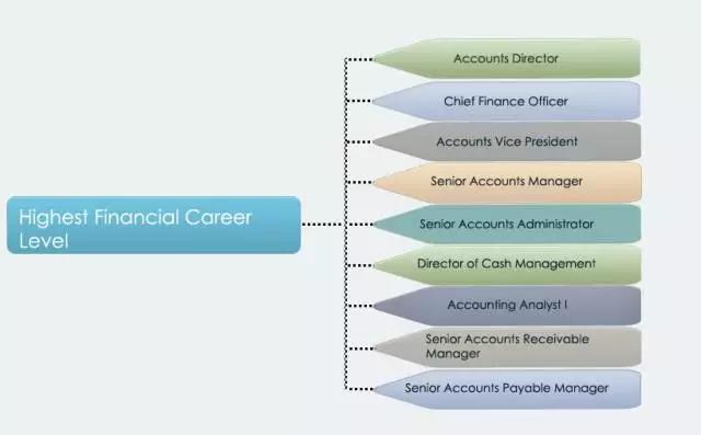 财务职业最高层级