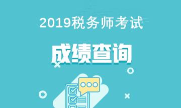2019税务师考试成绩查询