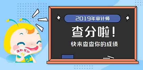 2018陕西初级审计师成绩图片