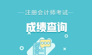 安徽注册会计师成绩查询通道已开通