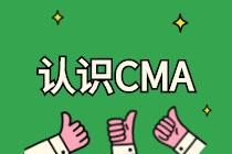 IMA是什么协会?和CMA有什么关系?