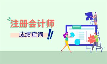吉林2019年CPA官网成绩查询时间公布了吗?