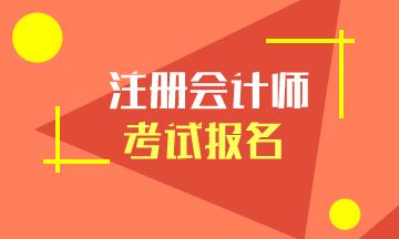 广东2020年注册会计师报名费已公布