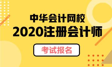 2020年辽宁注会考试报名费公布
