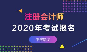 2020年湖南注会考试报名费公布