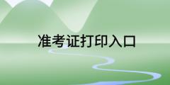 山东省2020高级经济师准考证打印入口