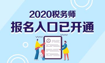 2020年税务师报名入口已开通!