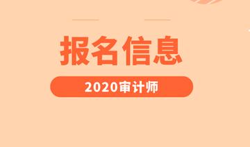 2020年审计师考试报名时间图片
