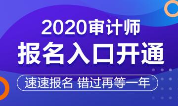 2020年黑龙江齐齐哈尔市审计师报名入口今日开通