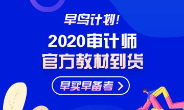 2020年初级审计师报名时间图片
