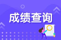 云南省2020年初级审计师成绩查询的入口开通了吗?