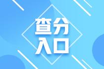 中国注册税务师证书查询图片