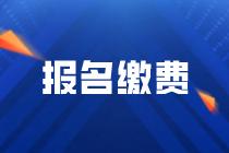 宁夏2020年高级经济师网上缴费时间:7月9日-24日23点