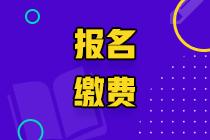 临沂2020高级经济师网上缴费时间延长至7月30日16:00