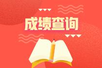 2020年上海高级经济师成绩查询时间已经公布