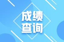 2020贵州高级经济师考试成绩在哪个网站发布?