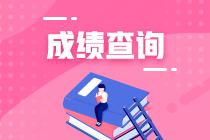 2018初级审计师成绩查询图片