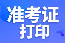 广东初级审计准考证图片