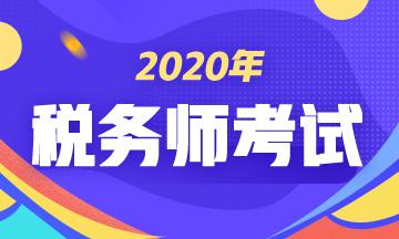 2020年税务师《涉税服务实务》考试教材和考试大纲