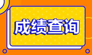 湖南长沙证券从业考试成绩查询流程!