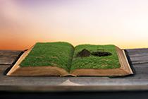 2020初级《审计专业相关知识》思维导图:第二章 宪法