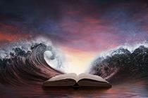 2020中级《审计专业相关知识》高频考点:行政复议法