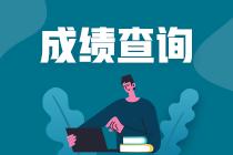 西藏2020高级经济师成绩管理规定_2020高级经济师考试改革