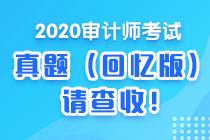 2020初级审计师《审计理论与实务》考试试题及参考答案(考生回忆)