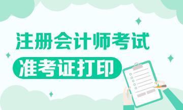 安徽2020注会专业阶段准考证打印