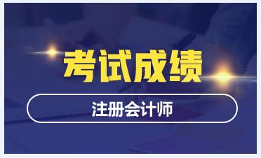 广州2020年CPA成绩查询时间
