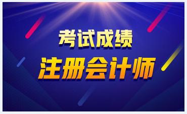 武汉2020注会考试成绩查询时间