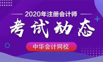2020年注册会计师《税法》答案什么时候才能出?