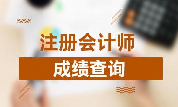 广西南宁2020注册会计师成绩查询时间